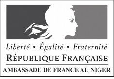 Logo ambassade de france Niger